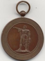 Médaille, Belgique, 1901 Huis Gustave | Leopold II. Souverain