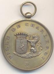 Médaille, Belgique, 1880Wurden | Leopold II. Souverain